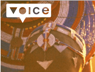 Learn from Innovation – programme VOICE