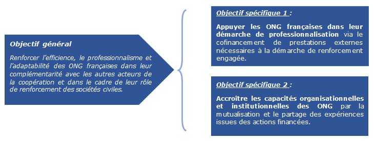 Renforcement et professionalisation des ong françaises de solidarité internationale